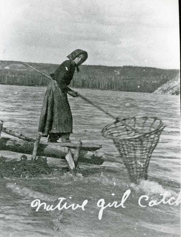 netting salmon