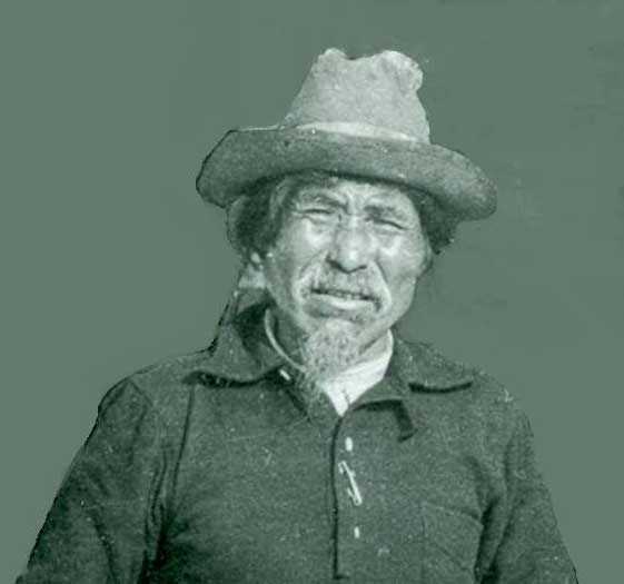 Chief Nicolai